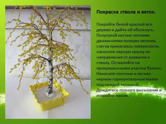 Экологическая компетентность педагога мастер класс сделай сам #6