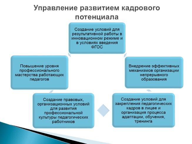 Анализ кадрового потенциала предприятия реферат курсовая работа  Развитие кадрового потенциала предприятия диплом