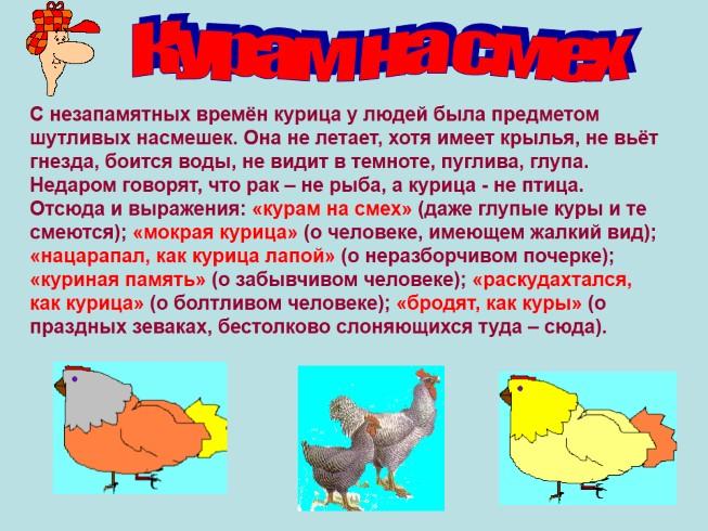 правила русский язык с знаком