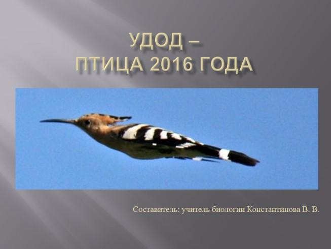 птица 2016 скачать торрент - фото 9