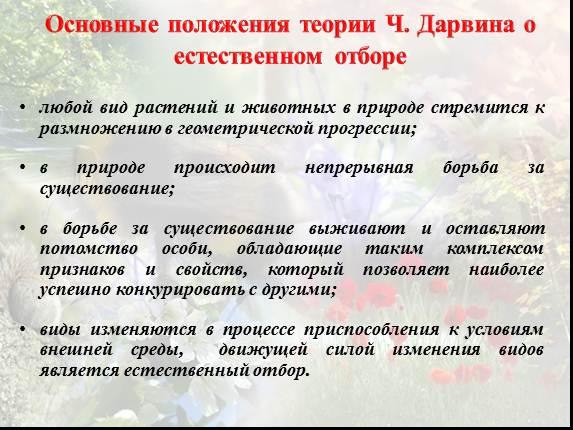 http://lusana.ru/files/231/573/21.jpg