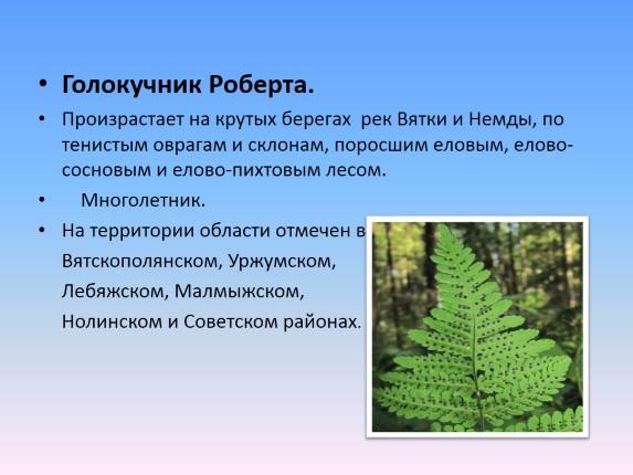 растения которые занесены в красную книгу забайкальского края