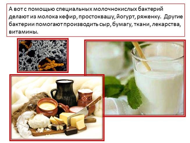 Делаем кефир из молока в домашних условиях