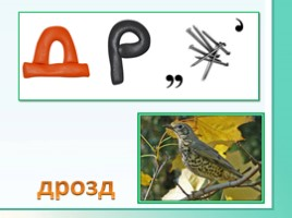 Животные Ленинградской области, слайд 26
