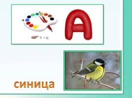 Животные Ленинградской области, слайд 27