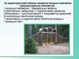 Животные Ленинградской области, слайд 38