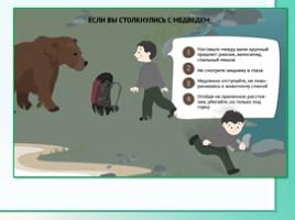Животные Ленинградской области, слайд 41