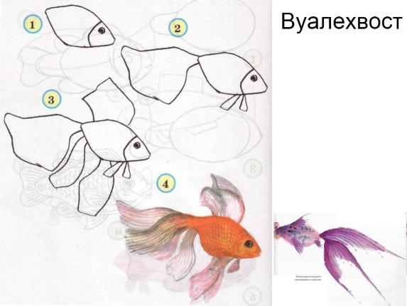 пошаговое рисование рыбака