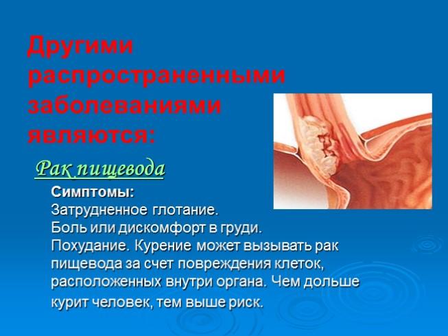 здоровье дыхательной системы человека
