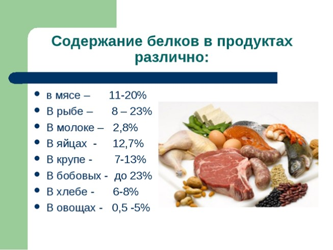 Белковые продукты список для беременных 93