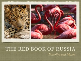 The Red Book of Russia