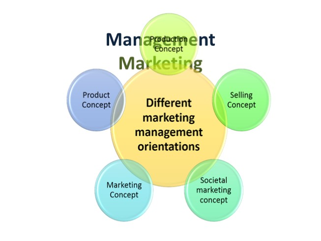 Management. Marketing (11 класс)