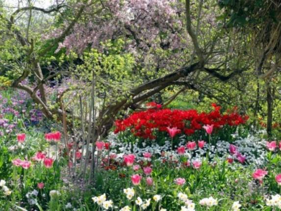 Les jardins et les parcs de paris - Parcs et jardins de paris ...