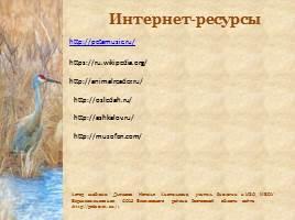 Птицы Рязанской области, слайд 22