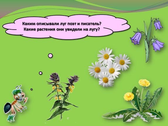 сообщение почему мы не будем рвать цветы и ловить бабочек