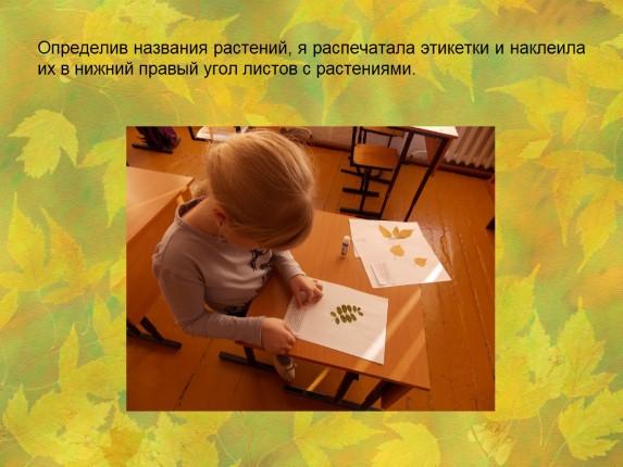 Титульный Лист Гербария Образец - фото 11