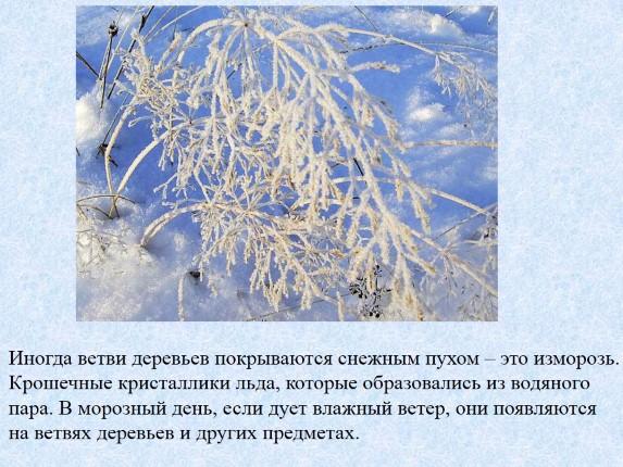 Презентация зима в природе картинки