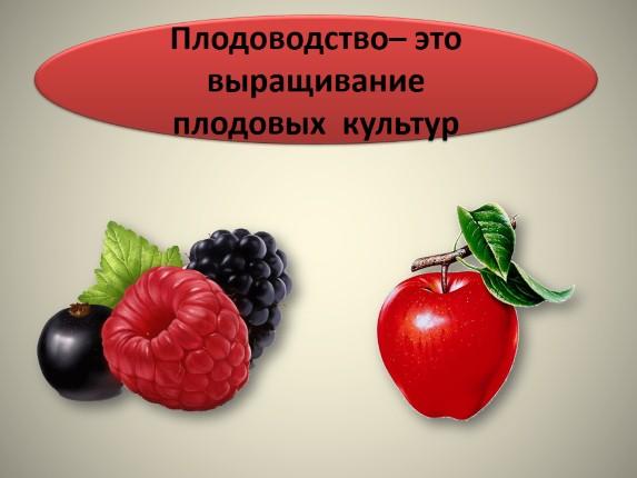 Презентацию на тему растениеводство в нашем крае