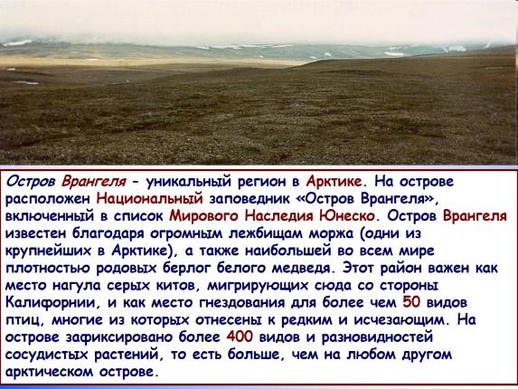 Зона арктических пустынь (4 класс)