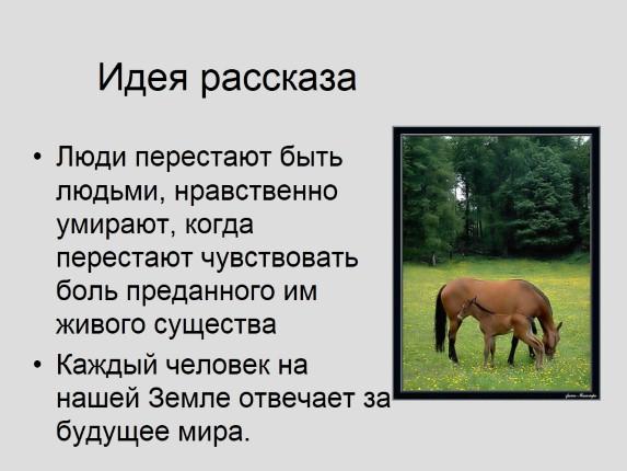 план рассказа абрамова о чем плачут лошади